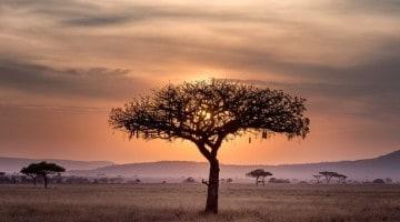 chanz kasiino lõuna aafrika reis